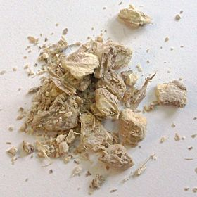 Gingembre racine bio 40 gr